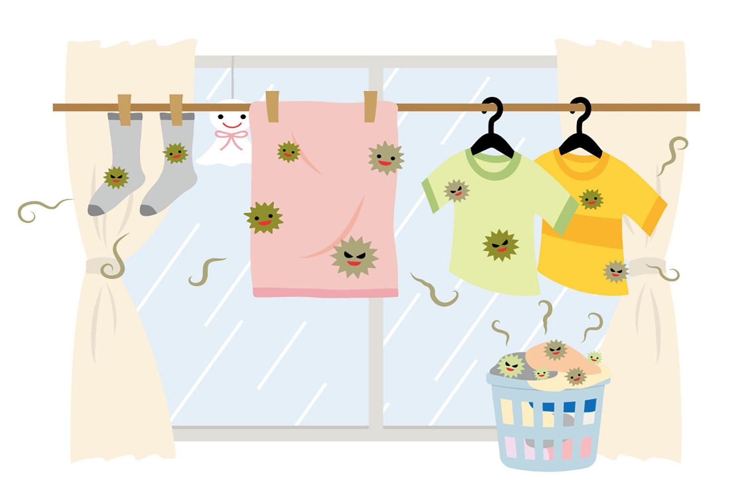 トランクルームのカビ対策は自分で?家具や荷物をカビから守る方法