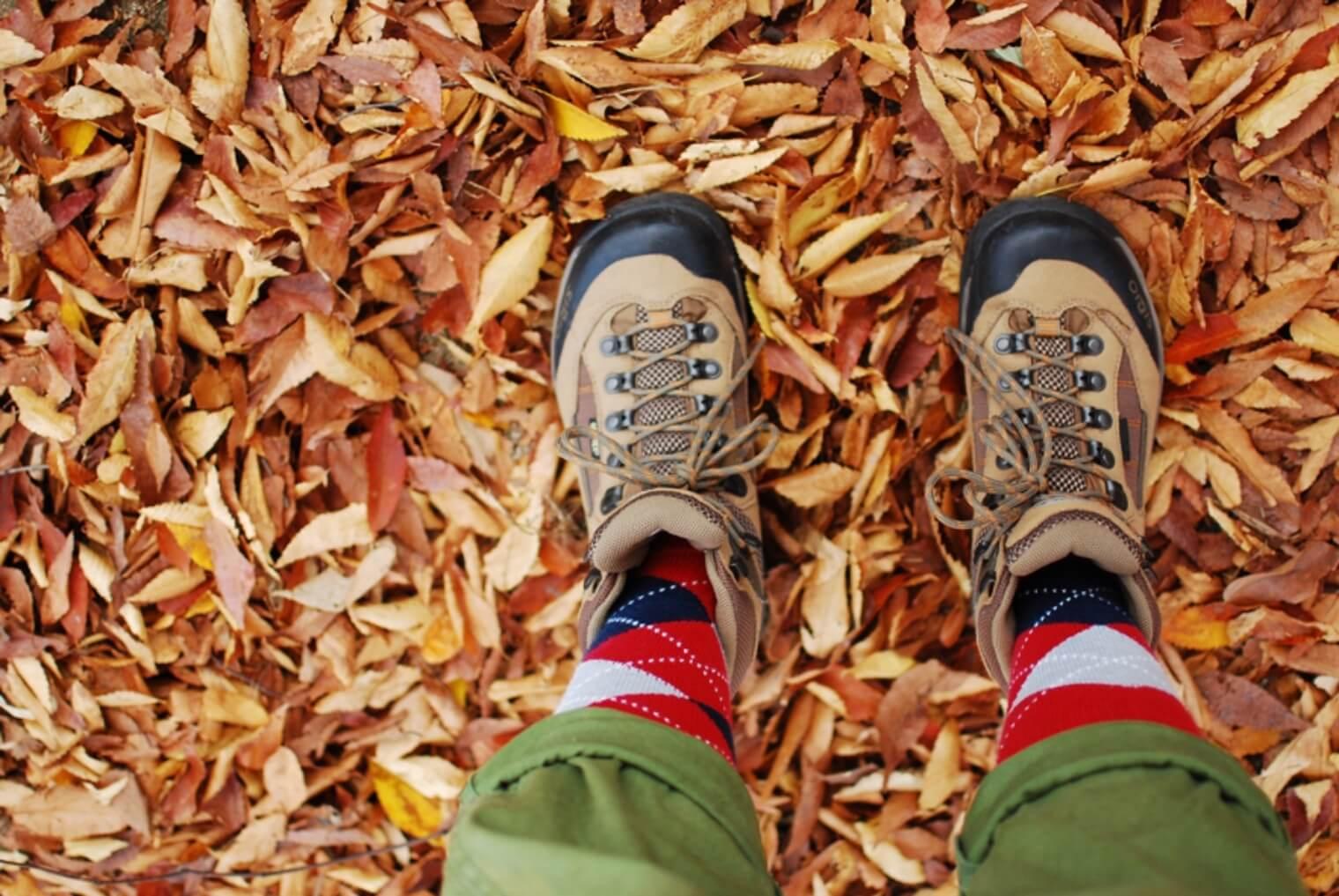 使った後の登山靴はどうするのがベスト?メンテナンスと保管方法とは